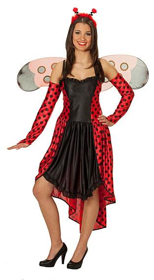 Kostýmy - Beruška šaty D